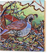 Quail Wood Print by Nadi Spencer