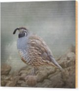 Quail On The Rocks Wood Print