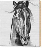 Quarter Horse Head Shot In Bic Pen Wood Print