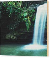 Quebrada Juan Diego Waterfall Mirror Image Wood Print