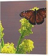 Queen Fritillary Wood Print