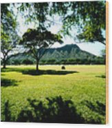 Queen Kapiolani Park Wood Print