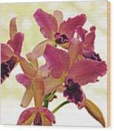 Queen Of Orchids Wood Print