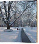 Queen's Park Pathway Wood Print