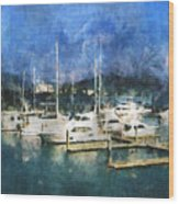 Queensland Marina Wood Print