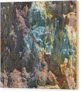 Queenstown Wood Print