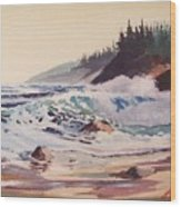 Quensland Beach Wood Print