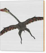 Quetzalcoatlus Flying Reptile Wood Print