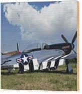 Quick Silver P-51 Color Wood Print