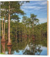 Quiet Afternoon At The Bayou Wood Print