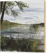 Quiet Day By Lake Wood Print
