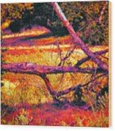 Quiet Meadow Wood Print