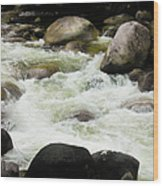 Quiet - Mossman Gorge, Far North Queensland, Australia Wood Print
