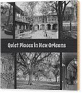 Quiet New Orleans Wood Print