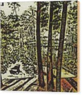 Quiet Pond Wood Print