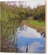Quiet River Wood Print