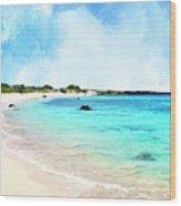 Quiet Shore Near Makalawena Wood Print