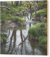 Quiet Stream Wood Print