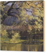 Quiet Waters Wood Print by Vicky Russell