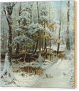 Quiet Winter Afternoon Wood Print