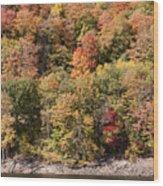 Quinnipiac River Color Wood Print