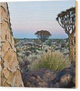 Quiver Tree Aloe Dichotoma, Quiver Tree Wood Print