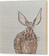 Rabbit 4 Wood Print