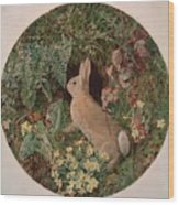 Rabbit Amid Ferns And Flowering Wood Print