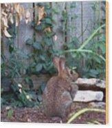 Rabbit Wood Print