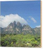 Organ Mountains Rabbit Ears Wood Print