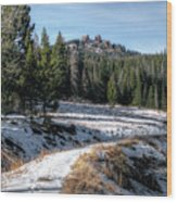Rabbit Ears Pass Wood Print