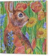 Rabbit In Meadow Wood Print
