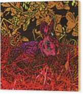 Rabbit Red Wood Print