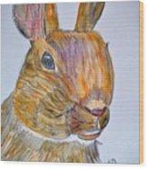 Rabbit Watercolor 15-01 Wood Print