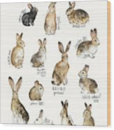 Rabbits And Hares Wood Print