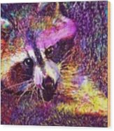 Raccoon Animal Cute Mammal  Wood Print