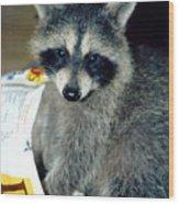 Raccoon1 Snack Bandit Wood Print