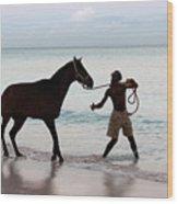 Race Horse And Groom 1 Wood Print