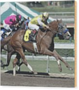 Race Horse Number 6 Wood Print
