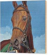 Radamez - Arabian Race Horse Wood Print