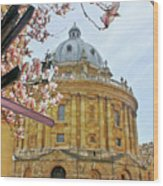 Radcliffe Camera Bodleian Library Oxford  Wood Print