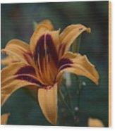 Radiant Lily Wood Print