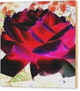 Radiant Red Rose Wood Print