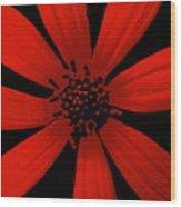 Radical Red Wood Print
