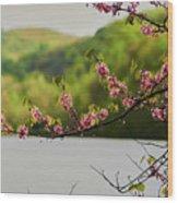 Radner Lake During The Spring Wood Print