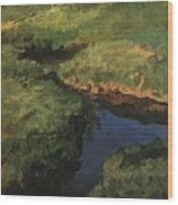 Raduga1 1908 Konstantin Andreevich 1869-1939 Somov Wood Print