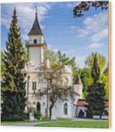 Radziejowice Castle Wood Print