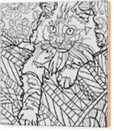 Ragdoll Kitten - Coloring Image Wood Print
