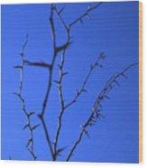 Ragged Edges Wood Print