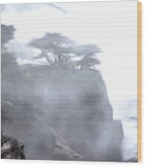 Ragged Shore In Fog Wood Print